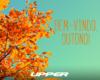 20 de março: o Outono chegou!